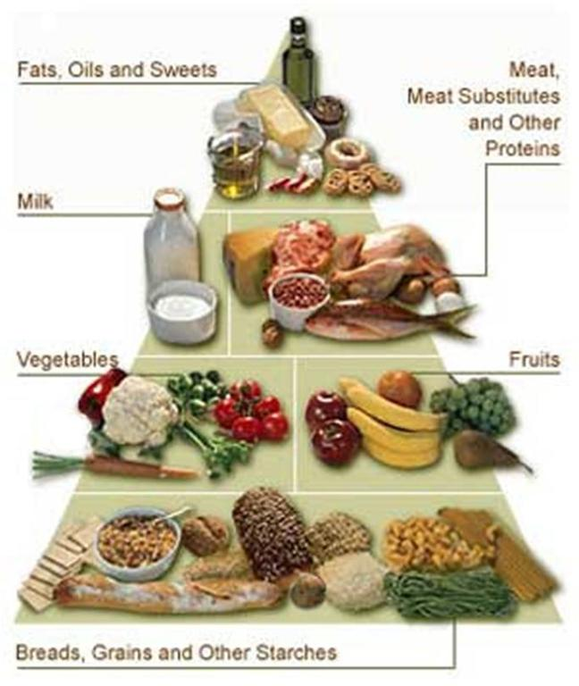 Balanced Diet Essay In Hindi